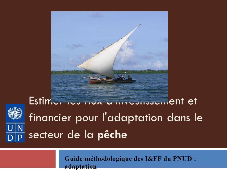 Estimer les flux d investissement et financier pour l adaptation dans le secteur de la pêche Guide méthodologique des I&FF du PNUD : adaptation