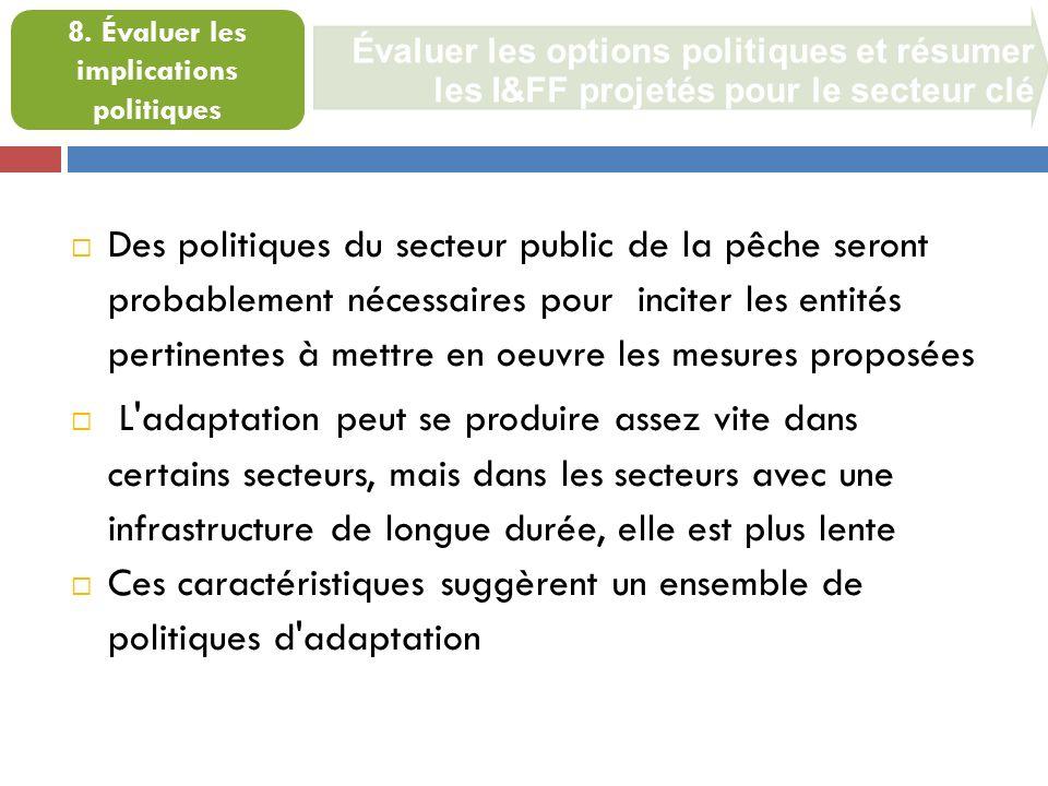 Évaluer les options politiques et résumer les I&FF projetés pour le secteur clé 8.