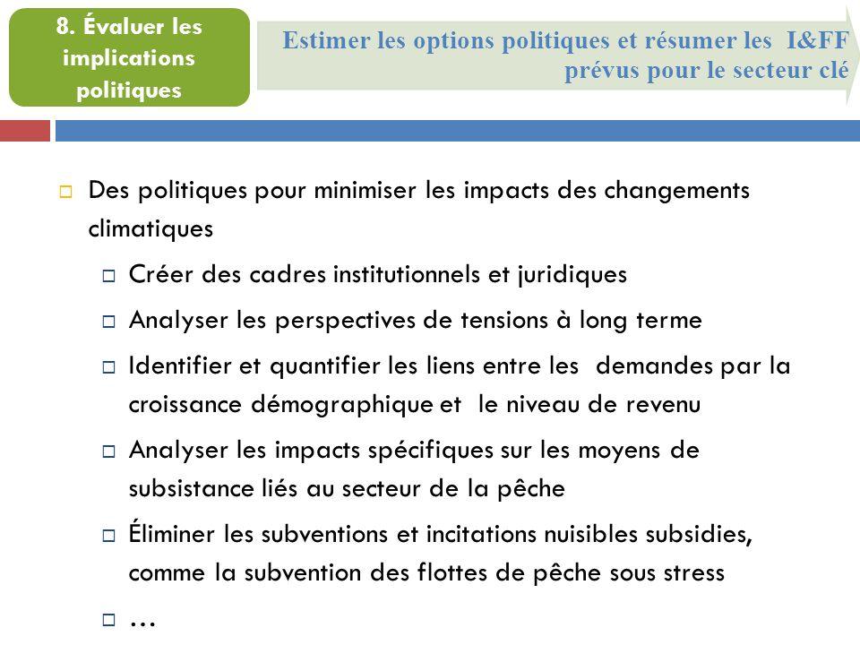 Estimer les options politiques et résumer les I&FF prévus pour le secteur clé 8.