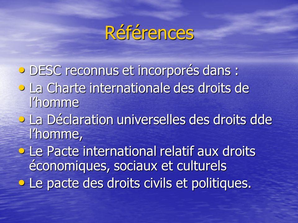 Action entreprise Interpellation en 1996 formulée par le SERAC et le Centre pour les droits économiques et sociaux (CESR).