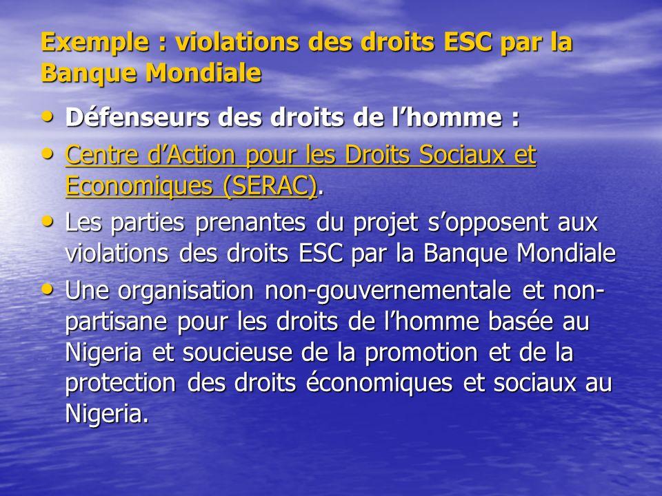 Exemple : violations des droits ESC par la Banque Mondiale Défenseurs des droits de lhomme : Défenseurs des droits de lhomme : Centre dAction pour les Droits Sociaux et Economiques (SERAC).