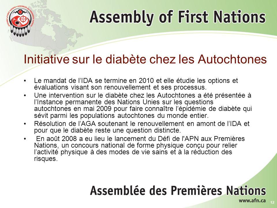 12 Initiative sur le diabète chez les Autochtones Le mandat de lIDA se termine en 2010 et elle étudie les options et évaluations visant son renouvellement et ses processus.