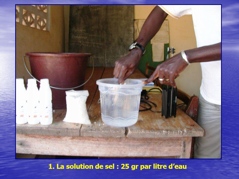 1. La solution de sel : 25 gr par litre deau