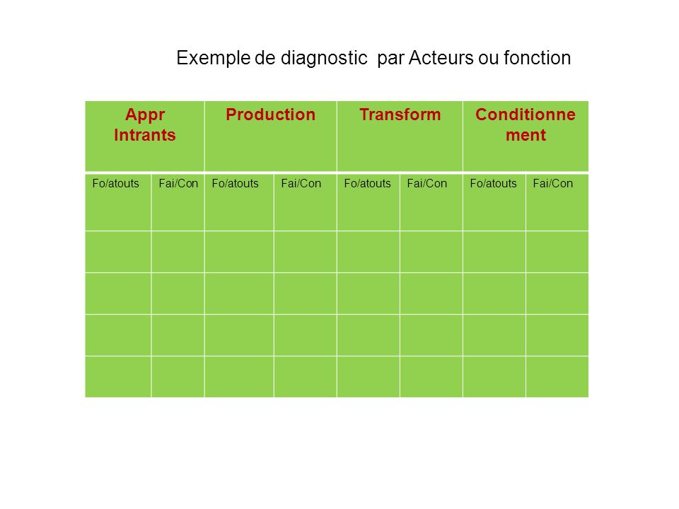 Exemple de diagnostic par Acteurs ou fonction Appr Intrants ProductionTransformConditionne ment Fo/atoutsFai/ConFo/atoutsFai/ConFo/atoutsFai/ConFo/ato