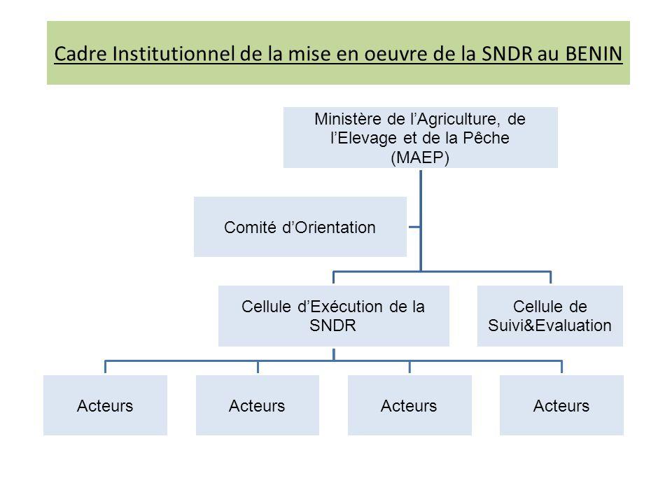 Cadre Institutionnel de la mise en oeuvre de la SNDR au BENIN Ministère de lAgriculture, de lElevage et de la Pêche (MAEP) Cellule dExécution de la SNDR Acteurs Cellule de Suivi&Evaluation Comité dOrientation