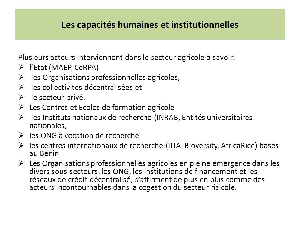 Les capacités humaines et institutionnelles Plusieurs acteurs interviennent dans le secteur agricole à savoir: lEtat (MAEP, CeRPA) les Organisations professionnelles agricoles, les collectivités décentralisées et le secteur privé.