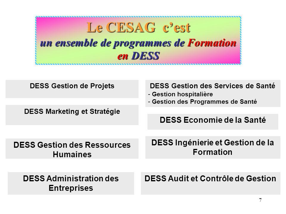 Le CESAG cest un ensemble de programmes de Formation en Licences et Masters (système LMD) Master Professionnel en Sciences de Gestion - Gestion des projets et création dentreprise; - Gestion des ressources humaines; - Marketing et Stratégie.