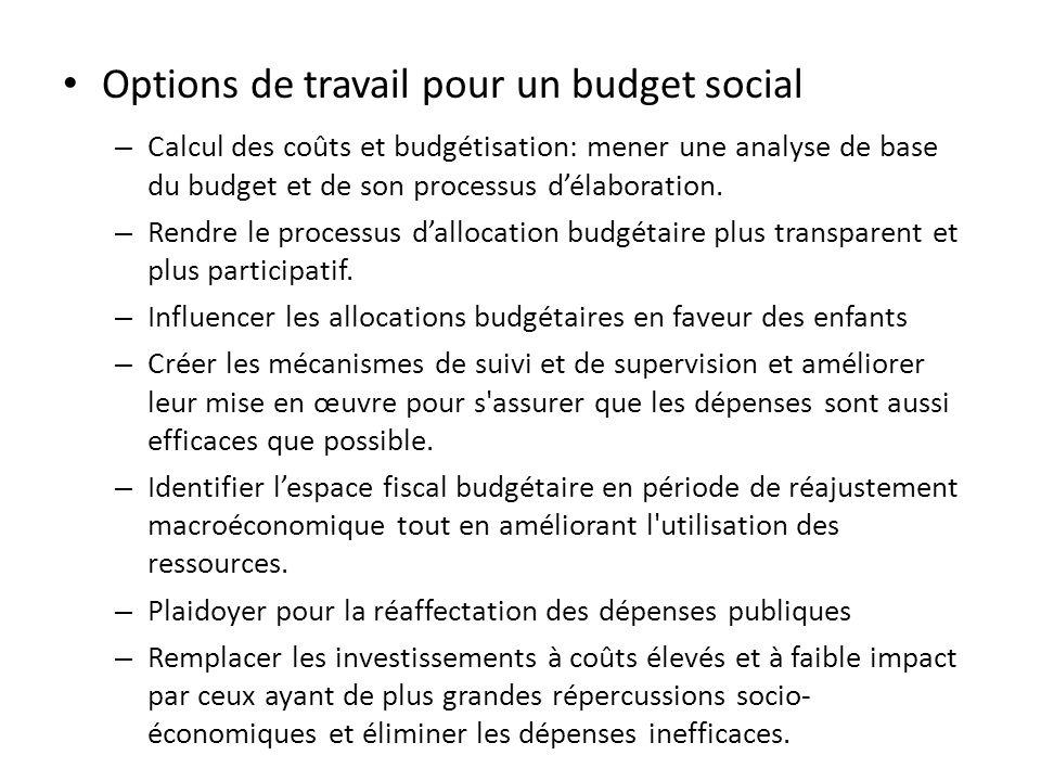 Options de travail pour un budget social – Calcul des coûts et budgétisation: mener une analyse de base du budget et de son processus délaboration.