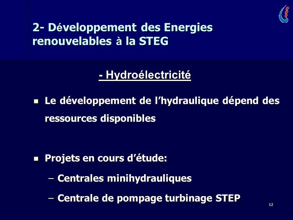 12 Le développement de lhydraulique dépend des ressources disponibles Le développement de lhydraulique dépend des ressources disponibles Projets en cours détude: Projets en cours détude: –Centrales minihydrauliques –Centrale de pompage turbinage STEP 2- D é veloppement des Energies renouvelables à la STEG - Hydroélectricité