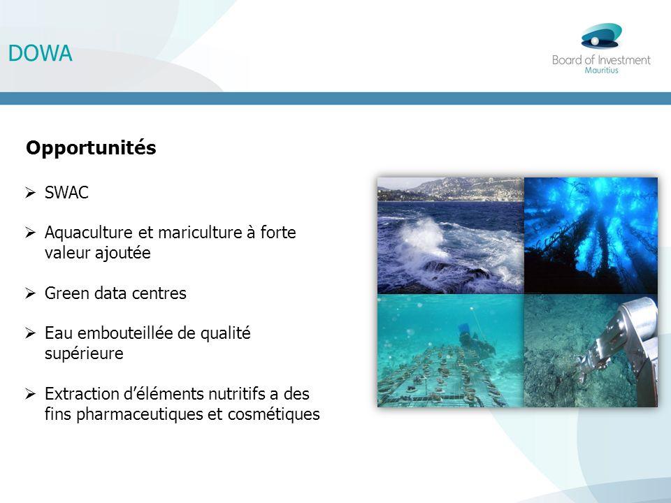 DOWA Opportunités SWAC Aquaculture et mariculture à forte valeur ajoutée Green data centres Eau embouteillée de qualité supérieure Extraction déléments nutritifs a des fins pharmaceutiques et cosmétiques