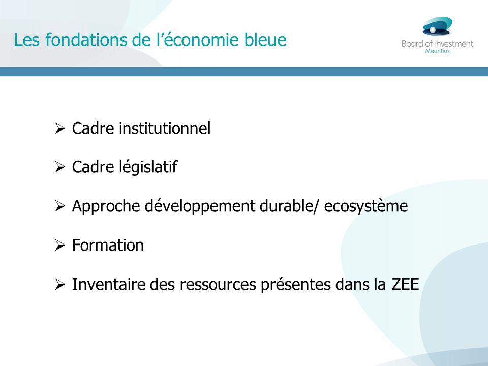 Les fondations de léconomie bleue Cadre institutionnel Cadre législatif Approche développement durable/ ecosystème Formation Inventaire des ressources présentes dans la ZEE
