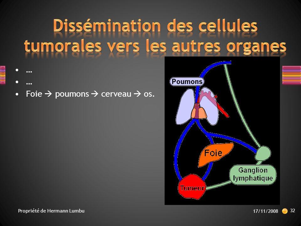 … Foie poumons cerveau os. 17/11/2008 32 Propriété de Hermann Lumbu