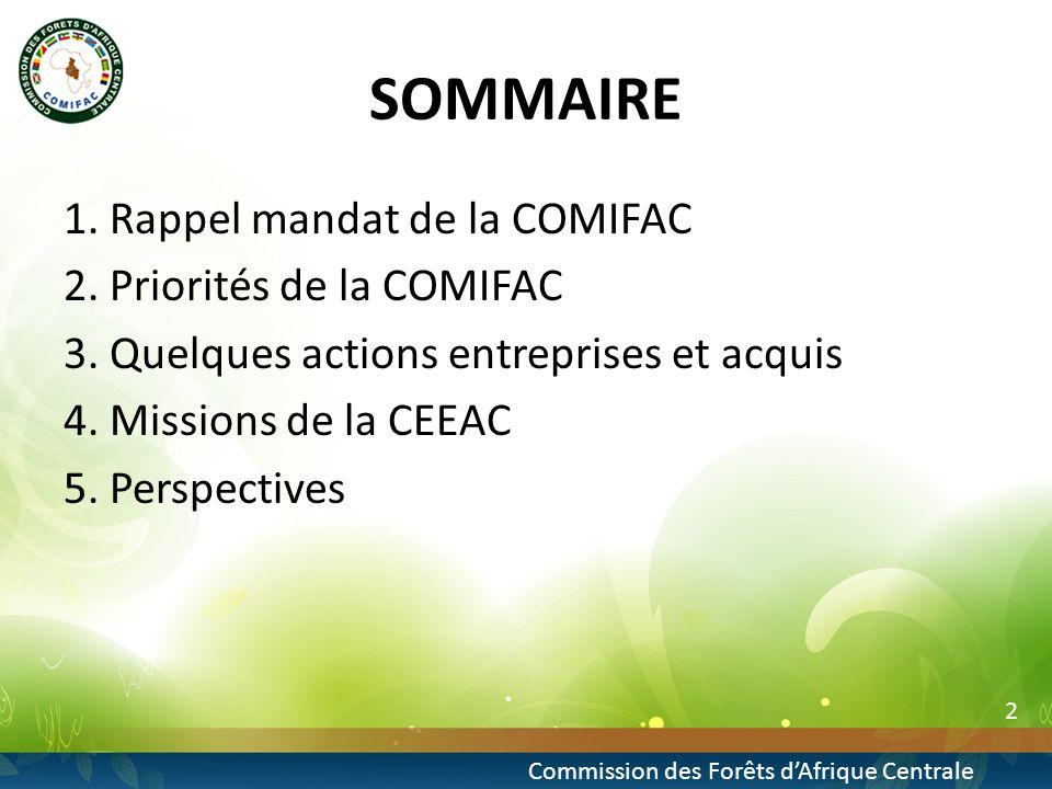 2 Commission des Forêts dAfrique Centrale SOMMAIRE 1.