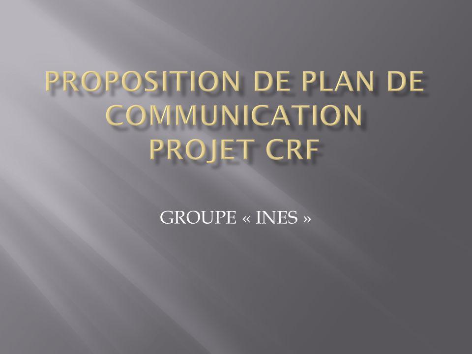 Faire comprendre / connaître les activités du projet Assurer lappropriation du projet dans son environnement de mise en œuvre