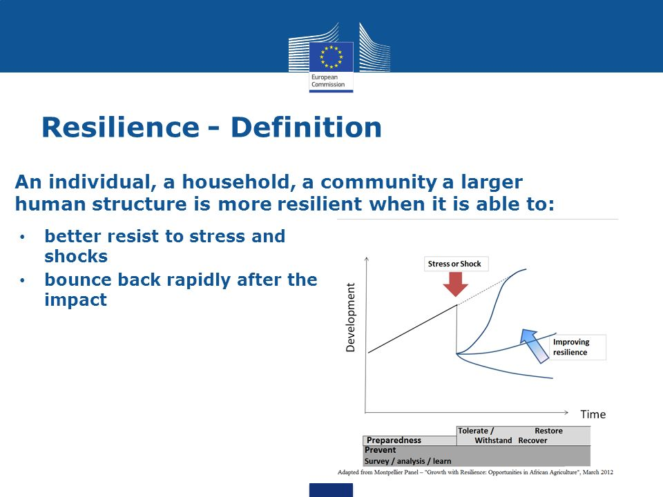 Vulnerability to stress and shocks Food crises Food and nutrition insecurity Poverty and limited access to productive assets Inappropriate land tenure systems Environmental degradation and desertification Pressure on natural resources Demography and urbanization Exposure to natural hazards Exposure to economic shocks and political conflicts Food prices fluctuation