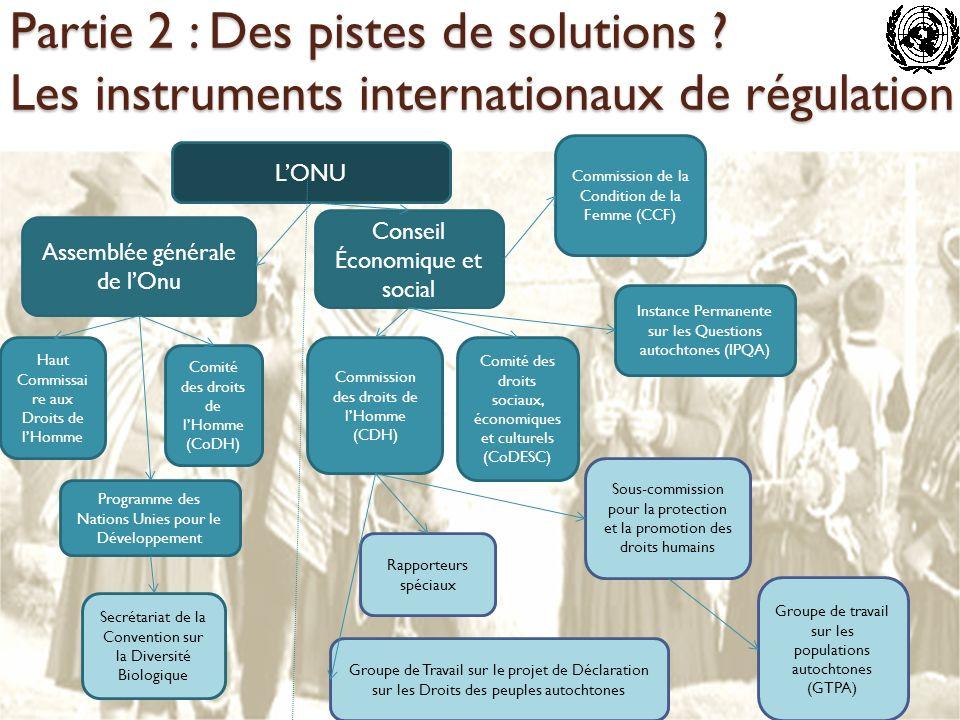 LONU Assemblée générale de lOnu Conseil Économique et social Haut Commissai re aux Droits de lHomme Comité des droits de lHomme (CoDH) Programme des N