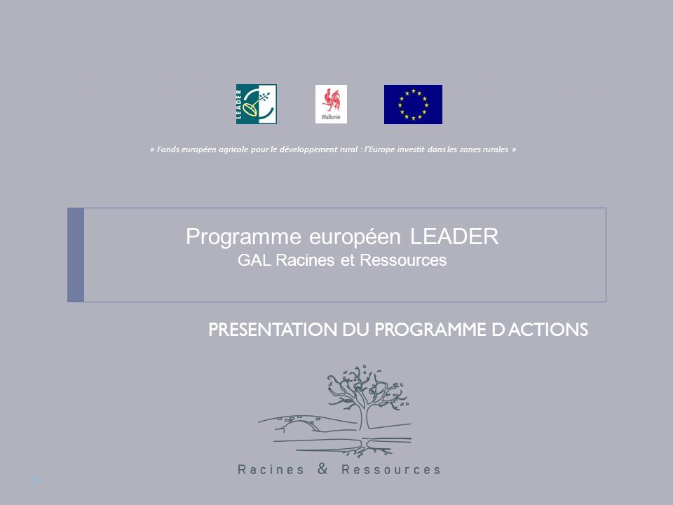 Le programme LEADER Quest ce que Leader .