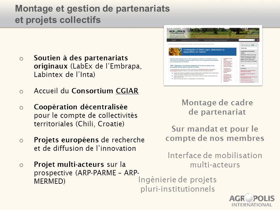 Montage et gestion de partenariats et projets collectifs o Soutien à des partenariats originaux (LabEx de lEmbrapa, Labintex de lInta) o Accueil du Co