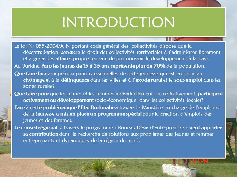 OBJECTIF GENERAL Le Conseil Régional du Nord en partenariat avec lAssociation Internationale des Régions Francophones (AIRF) souhaite apporter une réponse concrète à la création demplois par une nouvelle initiative sur le terrain du développement local.