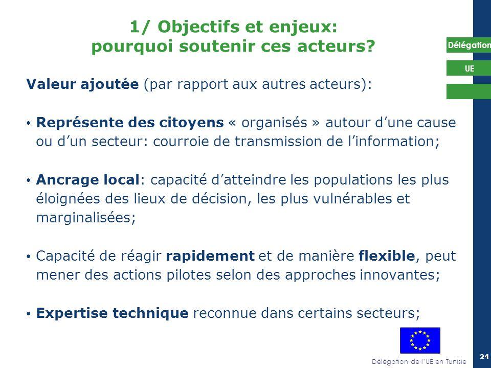 Délégation de lUE en Tunisie Délégation UE 24 Valeur ajoutée (par rapport aux autres acteurs): Représente des citoyens « organisés » autour dune cause