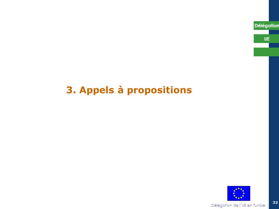 Délégation de lUE en Tunisie Délégation UE 32 3. Appels à propositions