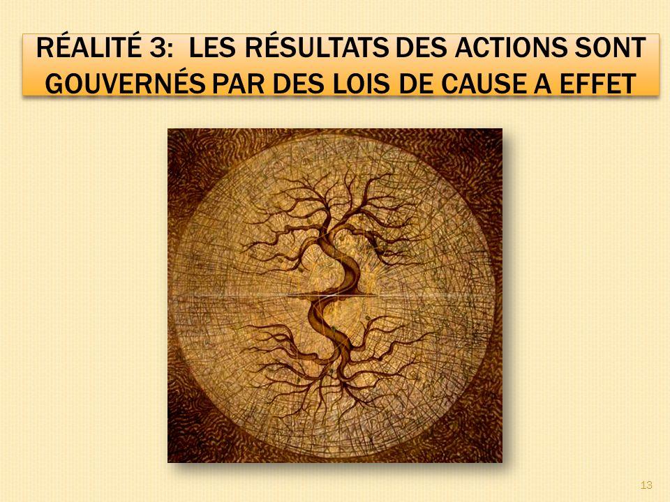 RÉALITÉ 3: LES RÉSULTATS DES ACTIONS SONT GOUVERNÉS PAR DES LOIS DE CAUSE A EFFET 13