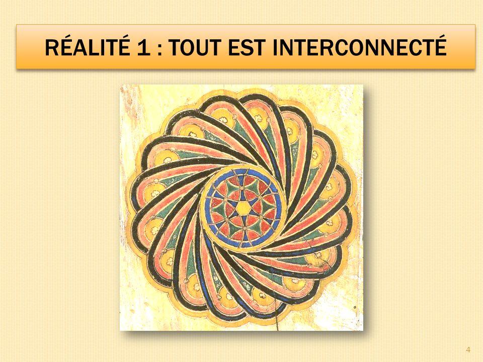 RÉALITÉ 1 : TOUT EST INTERCONNECTÉ 4
