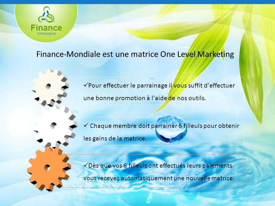 Finance compagnie Finance-Mondiale est une matrice One Level Marketing Chaque membre doit parrainer 6 filleuls pour obtenir les gains de la matrice.