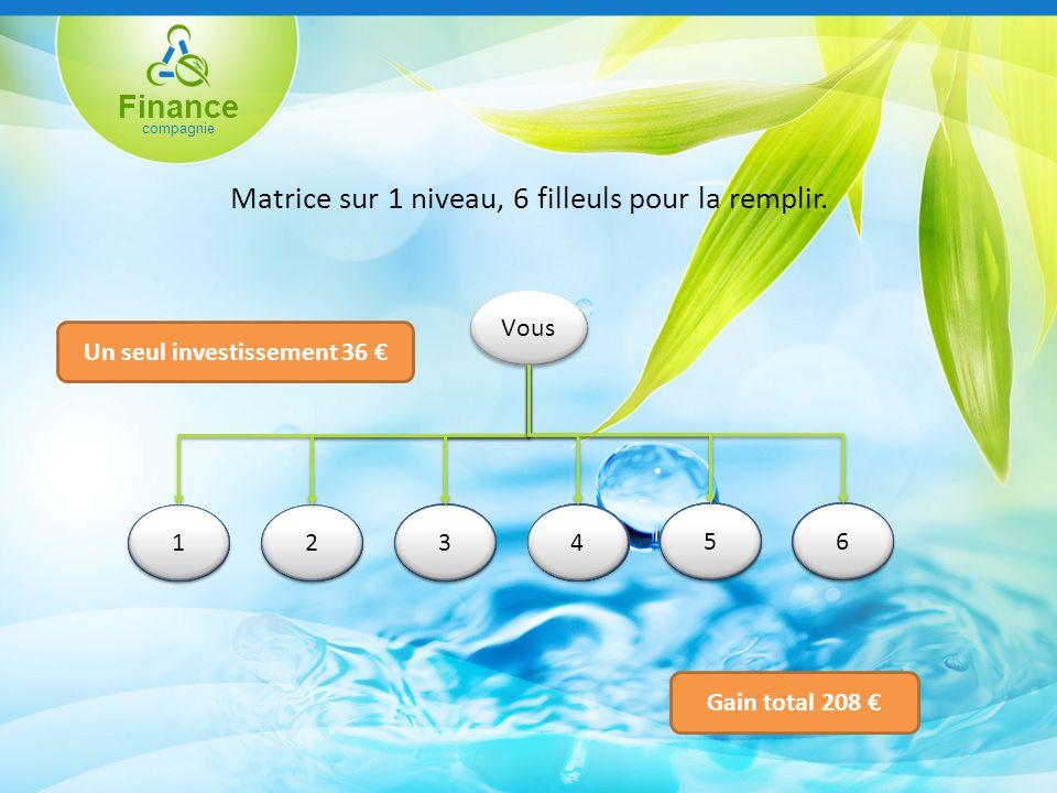 Finance compagnie Matrice sur 1 niveau, 6 filleuls pour la remplir.