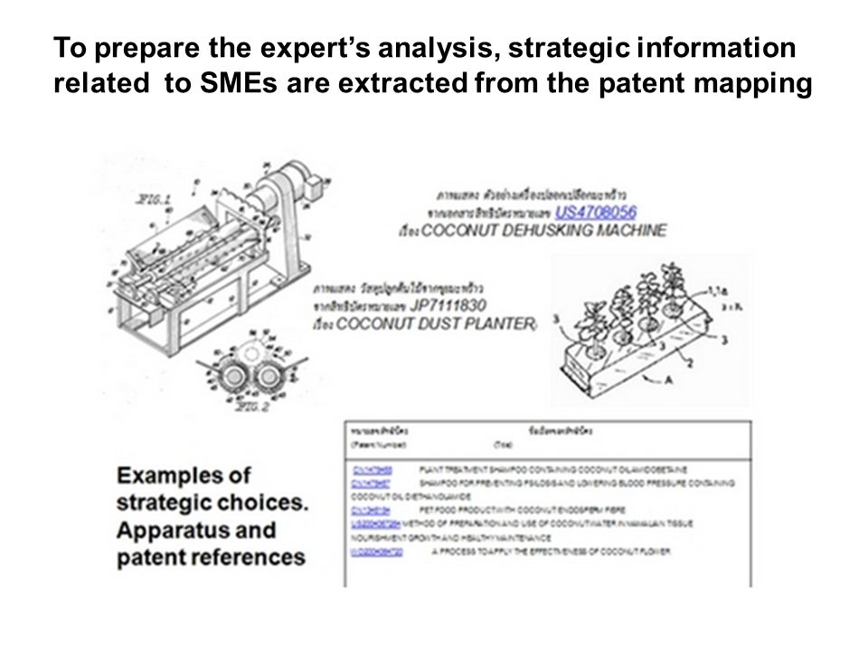 To prepare the experts analysis, strategic information related to SMEs are extracted from the patent mapping