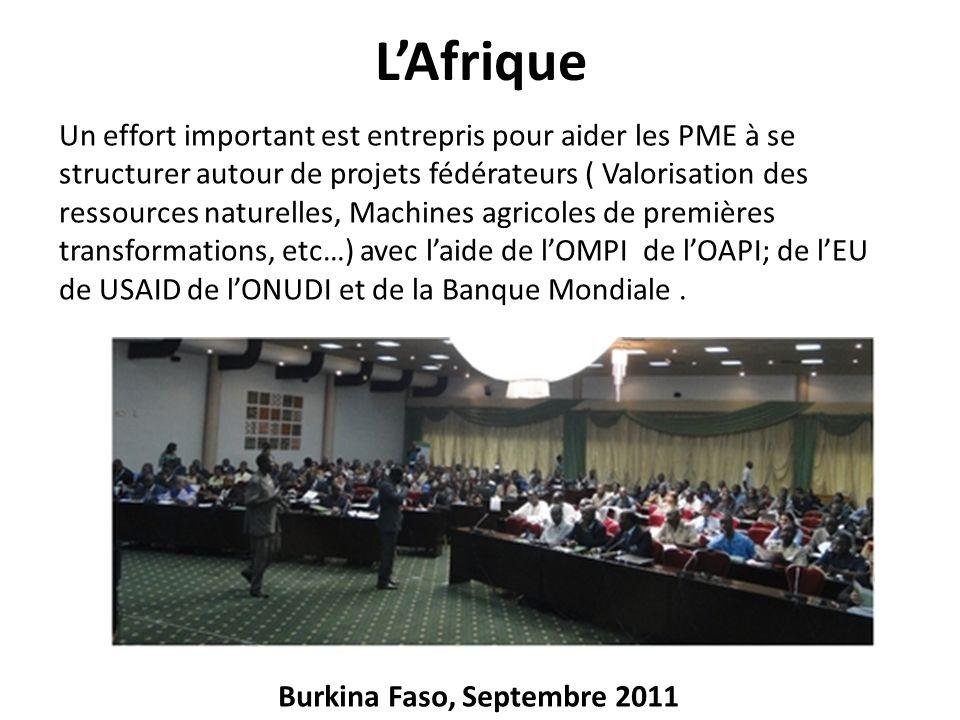 LAfrique Un effort important est entrepris pour aider les PME à se structurer autour de projets fédérateurs ( Valorisation des ressources naturelles,