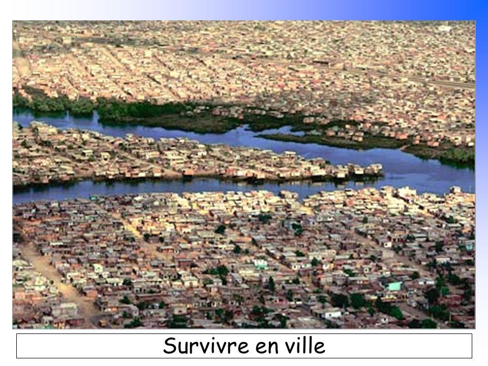 B. Pajot - mars 2007 Survivre en ville