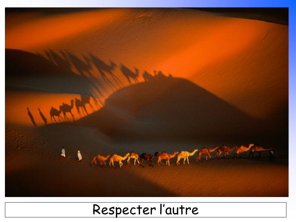 B. Pajot - mars 2007 Respecter lautre