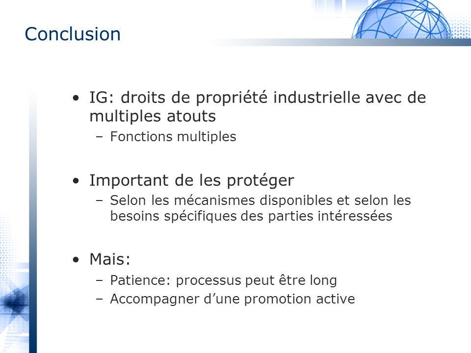 IG: droits de propriété industrielle avec de multiples atouts –Fonctions multiples Important de les protéger –Selon les mécanismes disponibles et selo