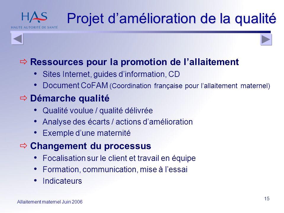 Allaitement maternel Juin 2006 15 Projet damélioration de la qualité Ressources pour la promotion de lallaitement Sites Internet, guides dinformation,