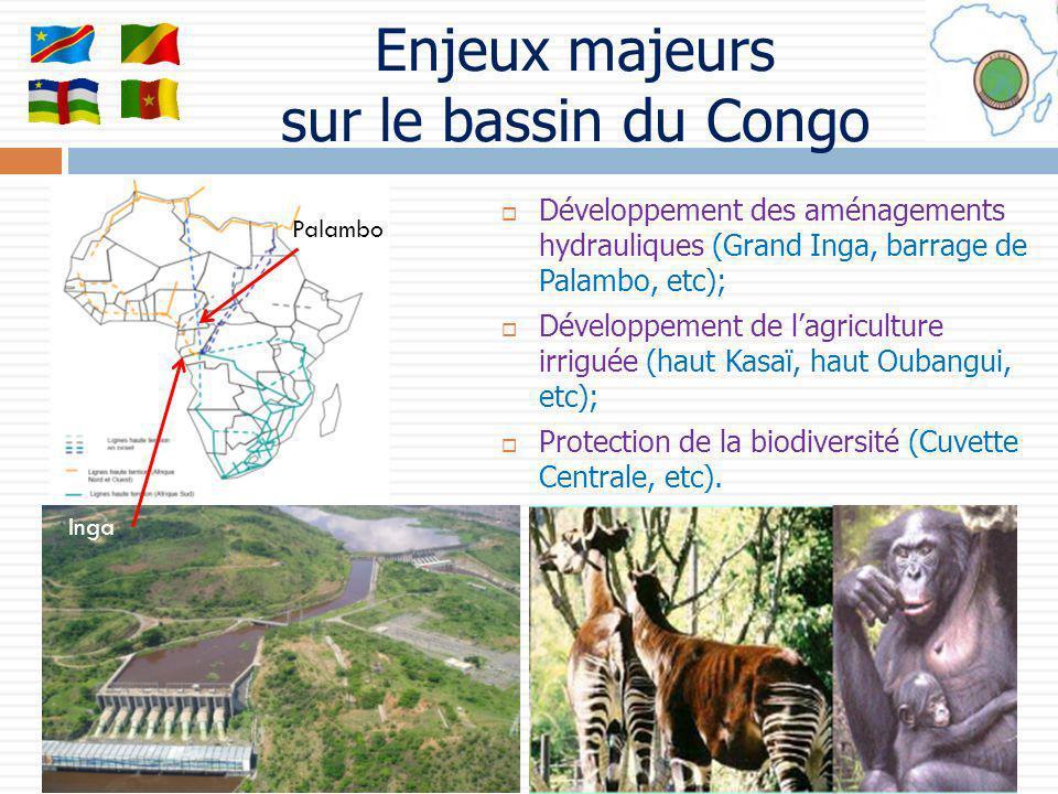 Enjeux majeurs sur le bassin du Congo Développement des aménagements hydrauliques (Grand Inga, barrage de Palambo, etc); Développement de lagriculture
