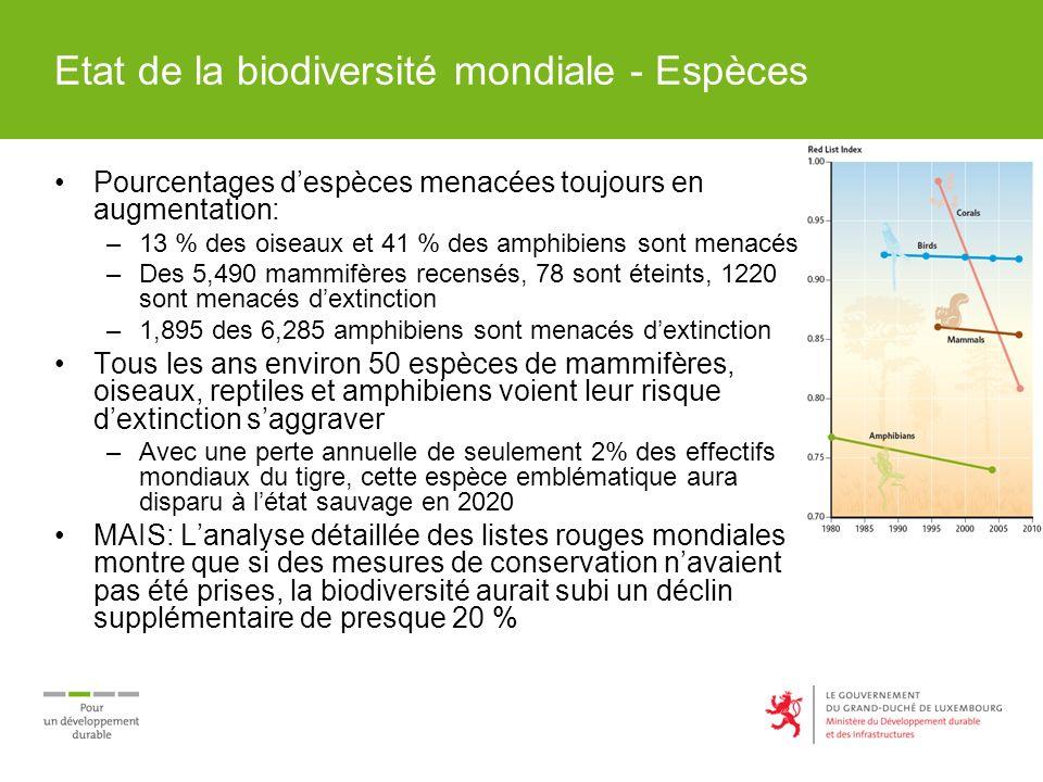 Etat de la biodiversité mondiale - Espèces Pourcentages despèces menacées toujours en augmentation: –13 % des oiseaux et 41 % des amphibiens sont menacés –Des 5,490 mammifères recensés, 78 sont éteints, 1220 sont menacés dextinction –1,895 des 6,285 amphibiens sont menacés dextinction Tous les ans environ 50 espèces de mammifères, oiseaux, reptiles et amphibiens voient leur risque dextinction saggraver –Avec une perte annuelle de seulement 2% des effectifs mondiaux du tigre, cette espèce emblématique aura disparu à létat sauvage en 2020 MAIS: Lanalyse détaillée des listes rouges mondiales montre que si des mesures de conservation navaient pas été prises, la biodiversité aurait subi un déclin supplémentaire de presque 20 %