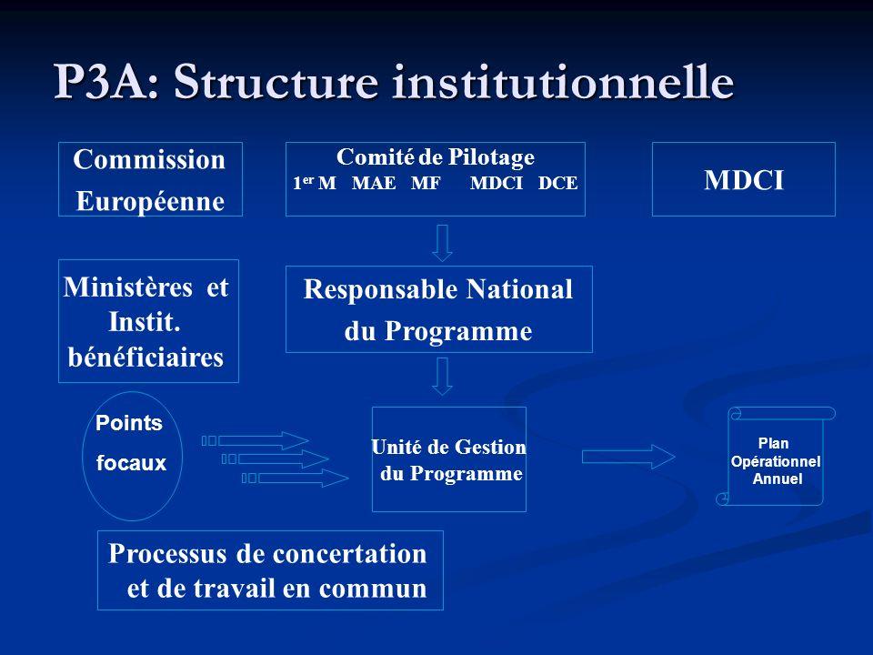 P3A: Structure institutionnelle Comité de Pilotage 1 er M MAE MF MDCI DCE Unité de Gestion du Programme Plan Opérationnel Annuel Points focaux Ministè