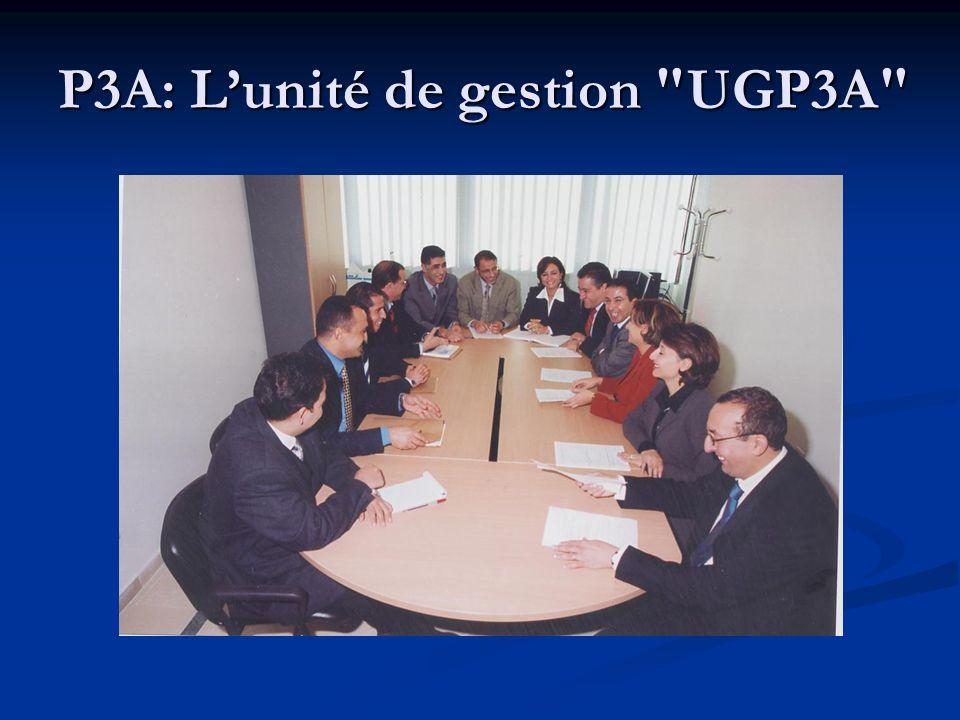 P3A: Lunité de gestion