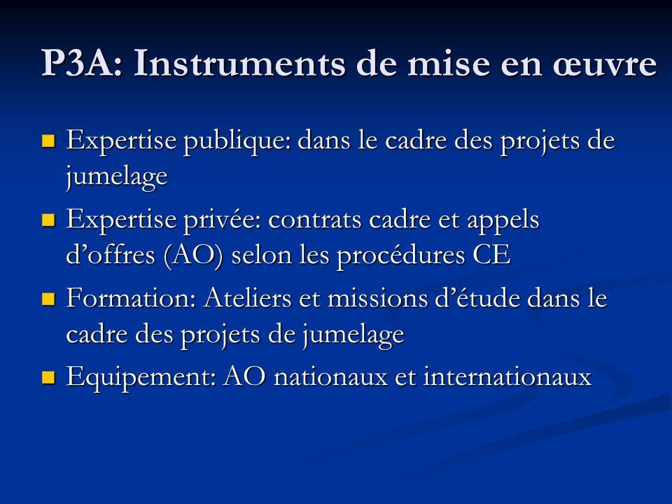 P3A: Instruments de mise en œuvre Expertise publique: dans le cadre des projets de jumelage Expertise privée: contrats cadre et appels doffres (AO) se