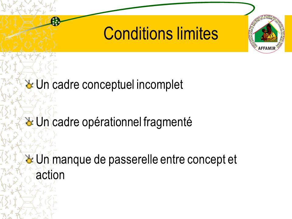 Un cadre conceptuel incomplet Un cadre opérationnel fragmenté Un manque de passerelle entre concept et action Conditions limites