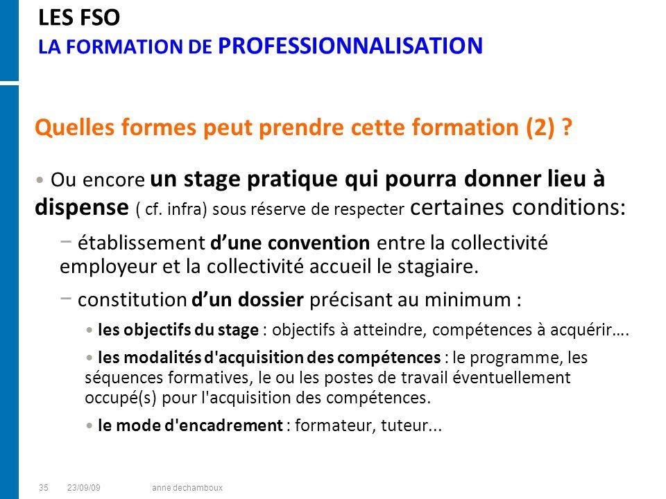 LES FSO LA FORMATION DE PROFESSIONNALISATION Quelles formes peut prendre cette formation (2) ? Ou encore un stage pratique qui pourra donner lieu à di