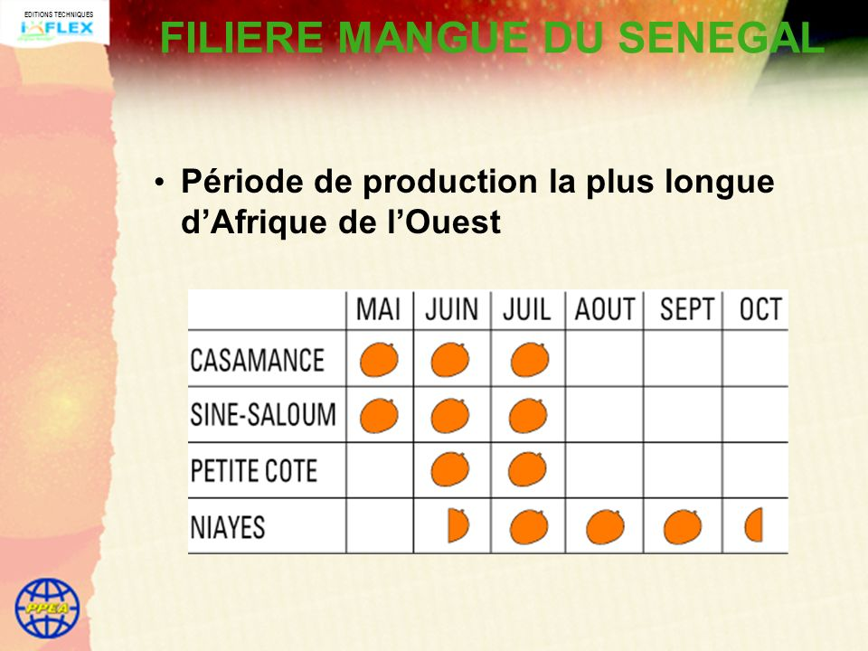 EDITIONS TECHNIQUES FILIERE MANGUE DU SENEGAL Période de production la plus longue dAfrique de lOuest