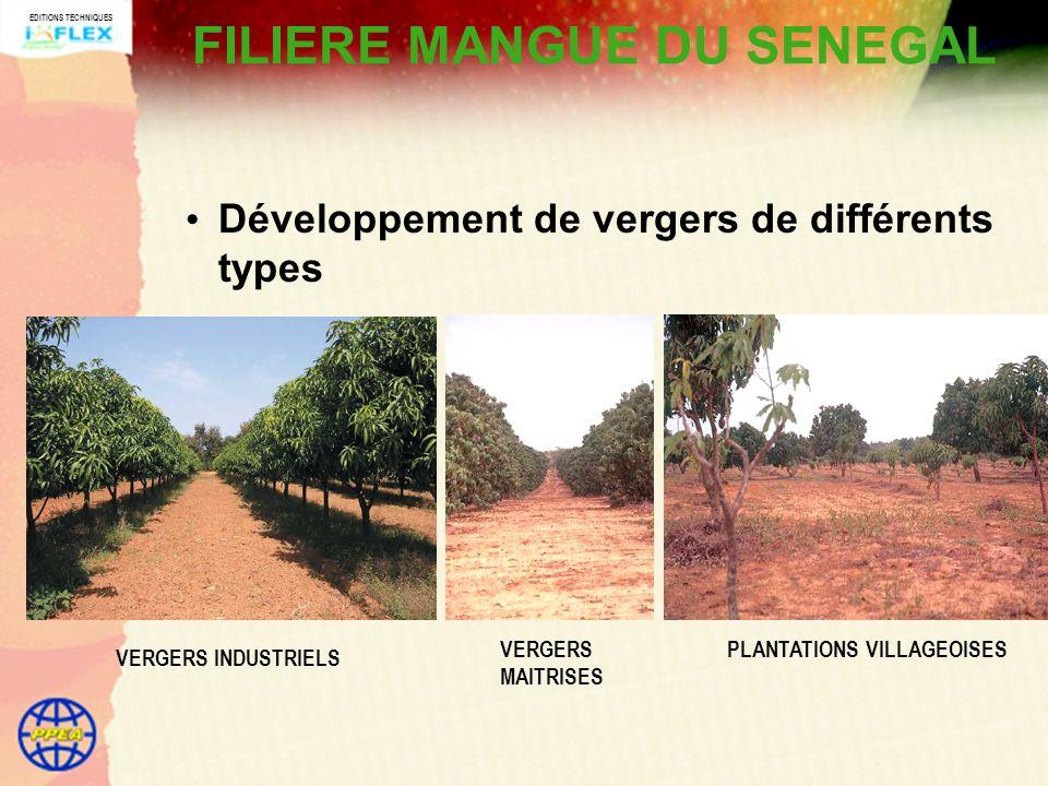 EDITIONS TECHNIQUES FILIERE MANGUE DU SENEGAL Développement de vergers de différents types VERGERS INDUSTRIELS VERGERS MAITRISES PLANTATIONS VILLAGEOISES