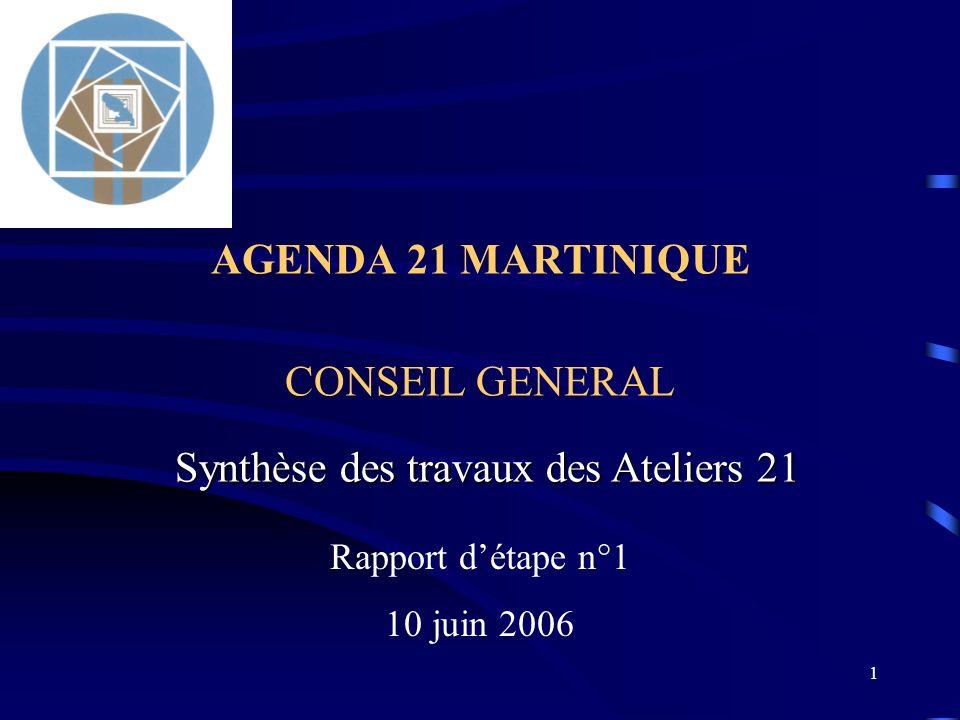 1 AGENDA 21 MARTINIQUE CONSEIL GENERAL Rapport détape n°1 10 juin 2006 Synthèse des travaux des Ateliers 21
