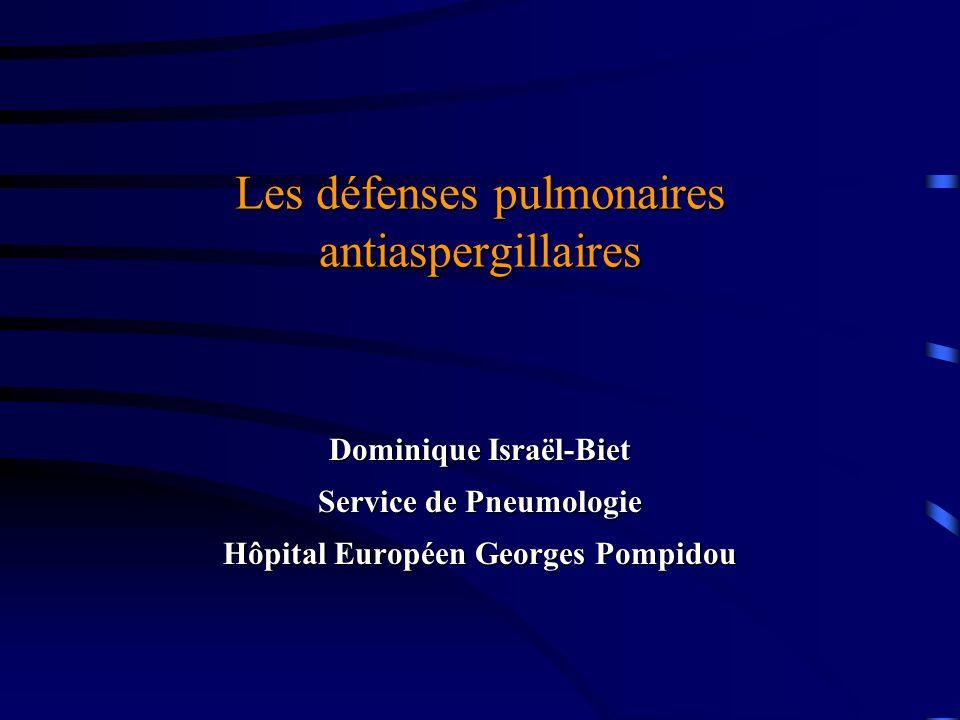 Les défenses pulmonaires antiaspergillaires Dominique Israël-Biet Service de Pneumologie Hôpital Européen Georges Pompidou