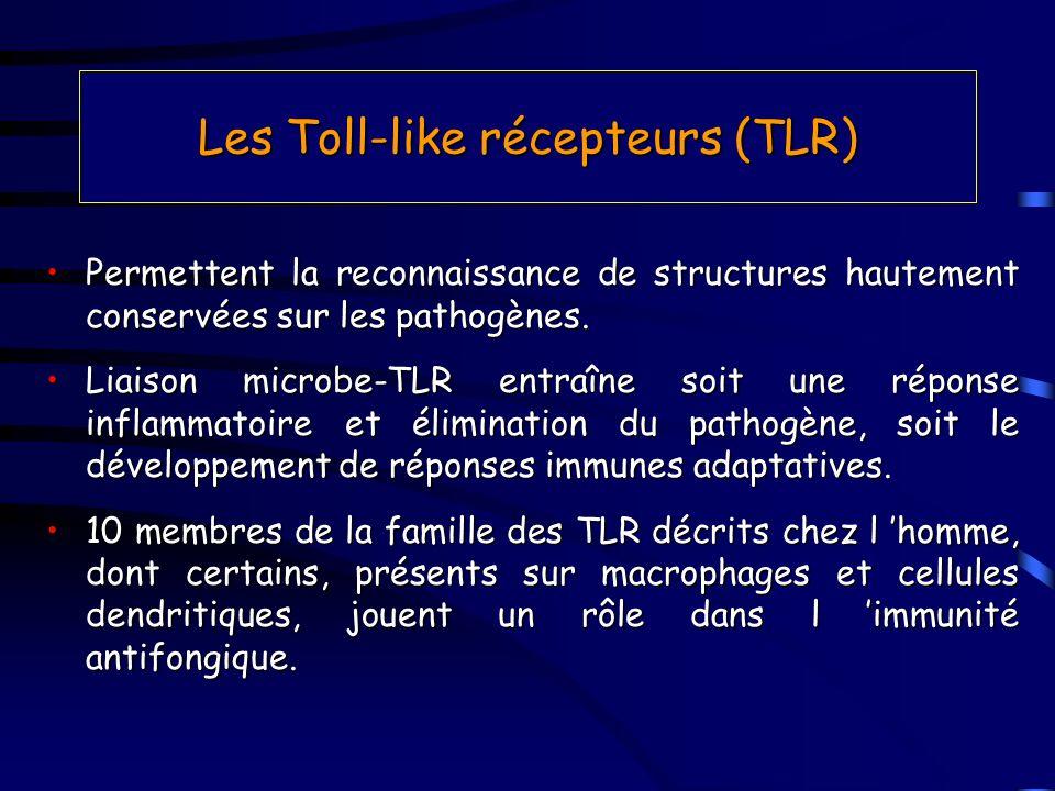 Les Toll-like récepteurs (TLR) Permettent la reconnaissance de structures hautement conservées sur les pathogènes.Permettent la reconnaissance de stru