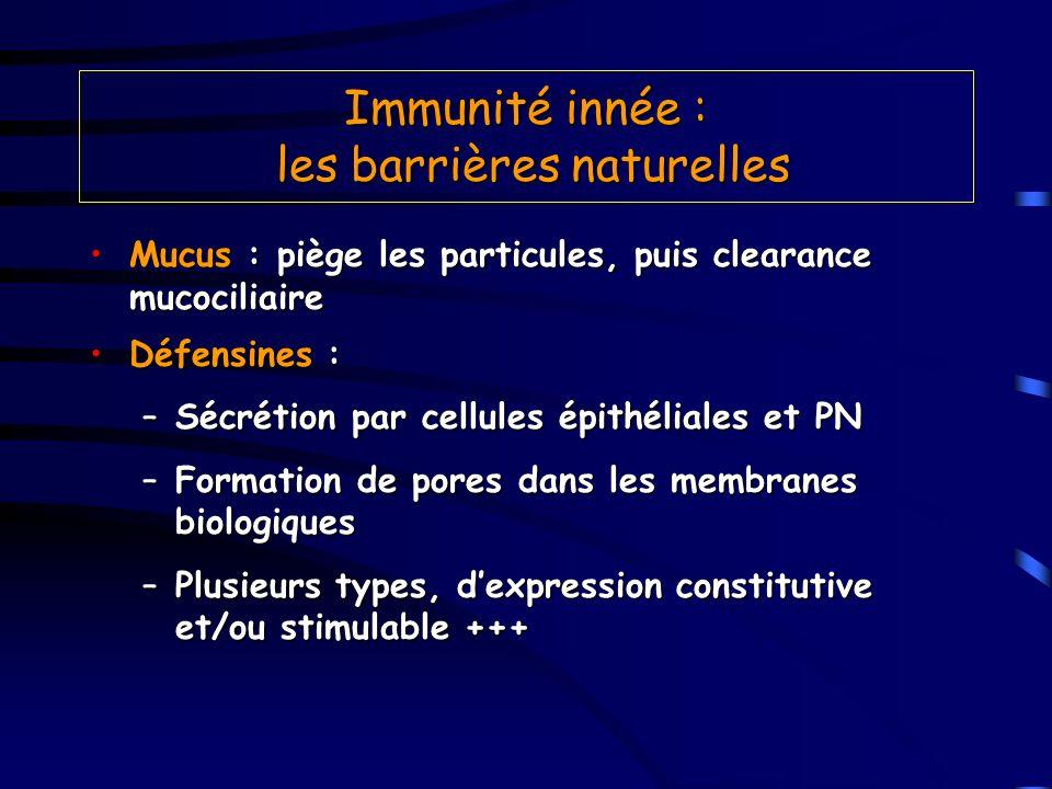 Immunité innée : les barrières naturelles Mucus : piège les particules, puis clearance mucociliaireMucus : piège les particules, puis clearance mucoci