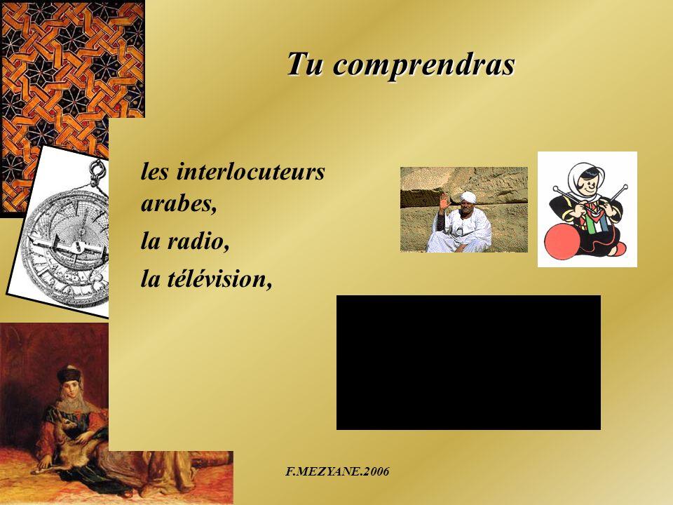 F.MEZYANE.2006 Tu comprendras les interlocuteurs arabes, la radio, la télévision,