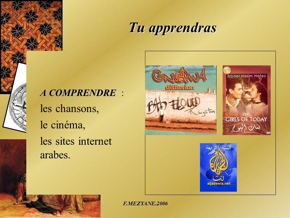 F.MEZYANE.2006 Tu apprendras A COMPRENDRE : les chansons, le cinéma, les sites internet arabes.